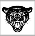 panther head - isolated on vector image vector image