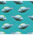 Seamless pattern with polygonal unicornfishes vector image vector image