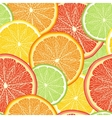 Abstract color background with citrus fruit vector image vector image