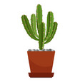 cactus in ceramic pot vector image vector image