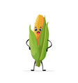 cute fresh corn character tasty mascot vegetable vector image
