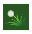 icon dandelion vector image vector image