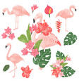 tropical flamingos set vector image vector image