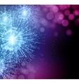 Celebrate party sparkler little fireworks vector image