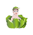 a small child who sits in the cabbage vector image