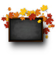 Background with blackboard and maple leaves vector image
