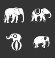 elephant icon set grey vector image