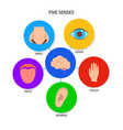 five human senses banner in flat style vector image