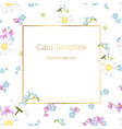 floral collection card template daisy chamomile vector image vector image