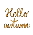 Hello autumn poster with lettering vector image