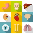 Human organs icons set flat style vector image vector image
