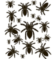 Set Spider Silhouette vector image