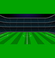 soccer stadium with green field vector image