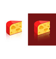 cheese icons isolated on white and dark background vector image