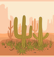 Desert landscape cactus and mountains sunset in