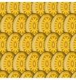 egg sun pattern vector image vector image