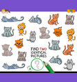 find two identical cats game for kids vector image vector image