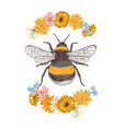 hand drawn bumblebee isolated on white background vector image vector image