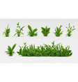 realistic green grass 3d fresh spring plants vector image
