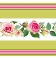 Seamless pattern with roses and stripes vector image vector image