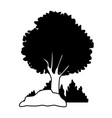 tree with bushes and rocks on black and white vector image