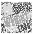 Weight Loss Word Cloud Concept vector image vector image