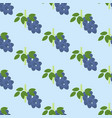 blueberry berry pattern vector image