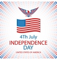 America Eagle American eagle background vector image