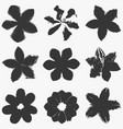 grunge flowers set vector image