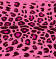 leopard pattern design background vector image vector image