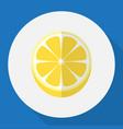 of dessert symbol on lemon vector image vector image