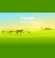 rural landscape and cows farm agriculture vector image vector image