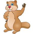 beaver cartoon vector image
