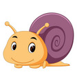 a comical snail vector image vector image