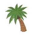big palm vector image