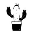 contour cactus plant with flower inside of vector image
