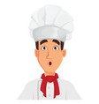 face expression of chef man surprised vector image vector image