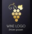grapes logo design element vector image vector image