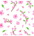 pink sakura blossom flowers petals and branches vector image