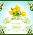 spring tulip and lilly flowers bunch poster vector image