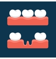 Teeth with Gum for Healthcare vector image