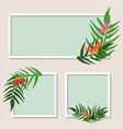 three frames with green leaves and flowers vector image vector image