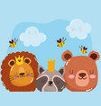 cute animals adorable faces lion bear raccoon vector image vector image