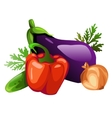Eggplant sweet peppers onion cucumber and salad vector image