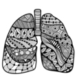 Hand drawn sketched lungs vector image vector image