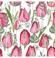 seamless pattern with tulips and herbs endless vector image