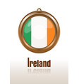gold medallion with the flag of ireland vector image