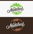 set natural hand written lettering logo vector image vector image