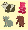 bear animal mammal teddy grizzly funny vector image