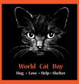 cat head animal for world cat day vector image vector image